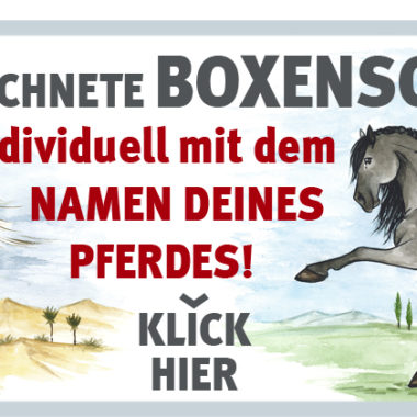 00-008-werbung-website_shop_1000x400px
