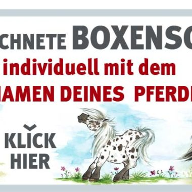00-010-werbung-website_shop_1000x400px