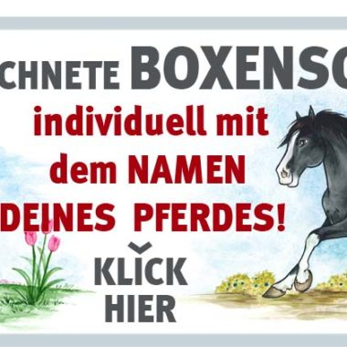 00-011-werbung-website_shop_1000x400px