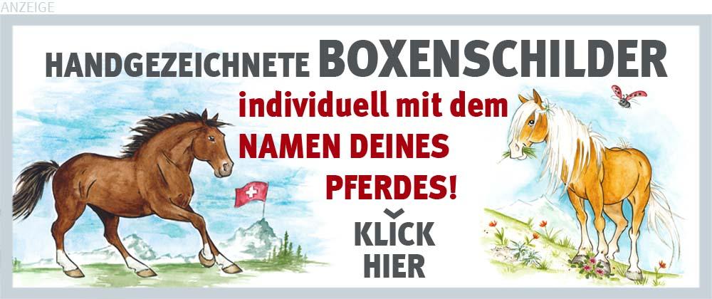 Boxenschilder und Stalltafeln für Haflinger und Freiberger