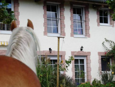 Reiterhof am Waldrand – Regina & Michael Fuchsberger