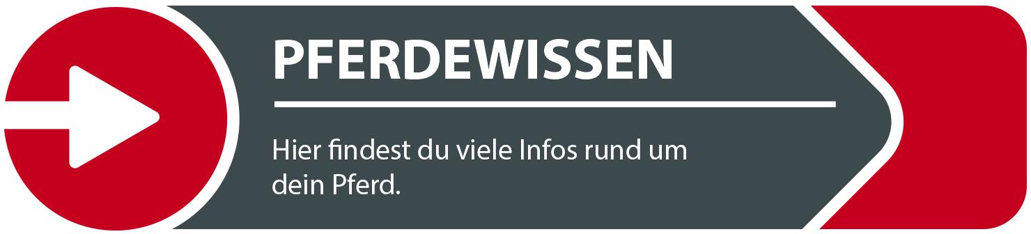 Informationen rund um´s Pferd, Begriffserklärungen etc.