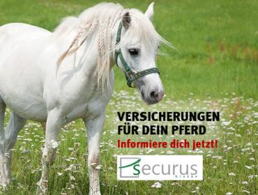 securus Assekurranzmakler Berlin GmbH & Co. KG. – Versicherungen für Pferde