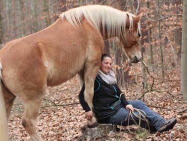 Katrin Seifert – Natural Horsemanship Katrin Seifert
