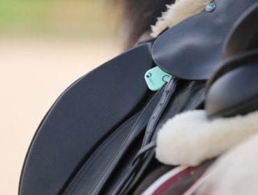 Guardian Horse – Dein Begleiter beim Ausreiten
