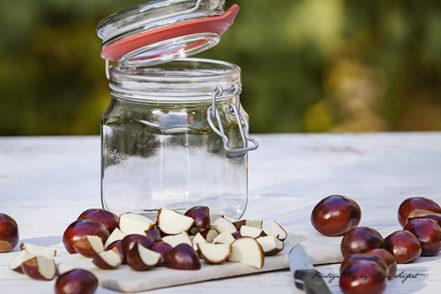 Kastanienwaschmittel zum Selbermachen