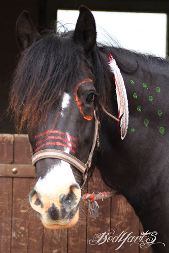 BodYarts - Yvonne Suche, Bodypainting für Pferde