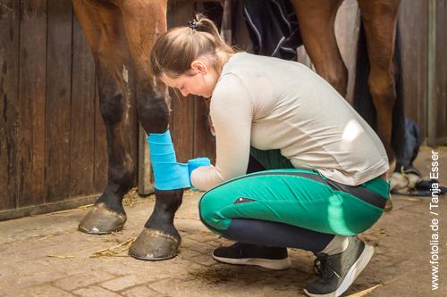 Stallbandagen beim Pferd anlegen - so schädlich ist es wirklich. Foto: Tanja Esser