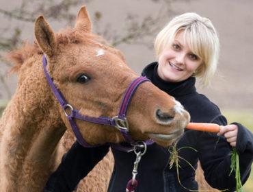 Möhren in der Pferdefütterung – Was man wissen sollte