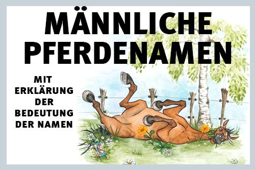 000181-pferdenamen-fuer-pferde-und-fohlen