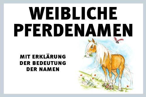 000182-pferdenamen-fuer-pferde-und-fohlen