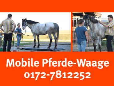 Mobile Pferdewaage