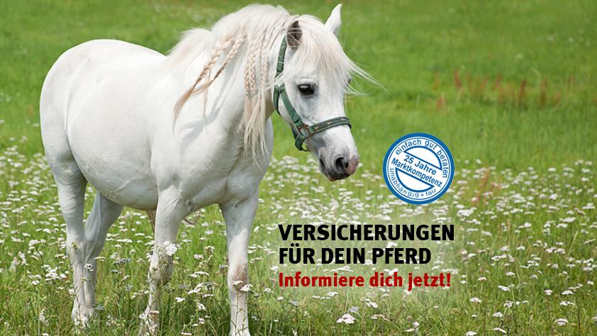 Versicherungen für Pferde – Thorsten Freyer