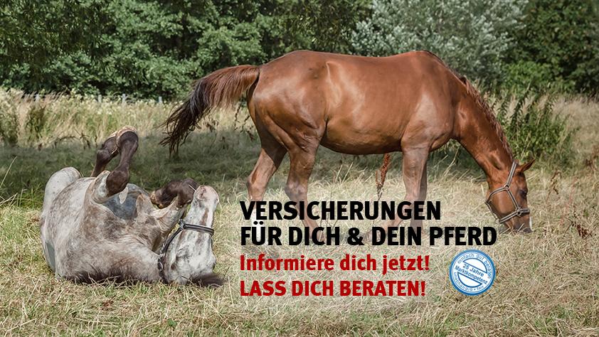 Versicherungen rund ums Pferd