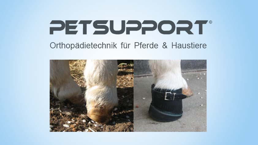 Petsupport Orthopädietechnik für Pferde