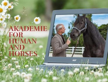 Akademie for Human and Horses - Antje Müller