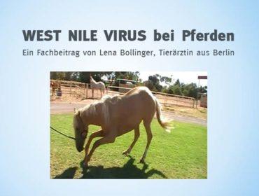 West Nile Virus - Ein Fachbeitrag von Lena Bollinger