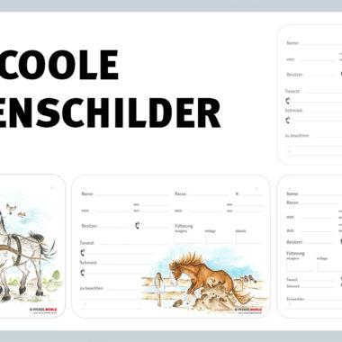 coole-boxenschilder-01-3