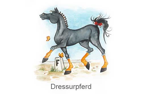 Produkte für Dressurpferde