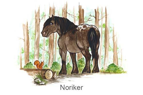 Produkte für Noriker