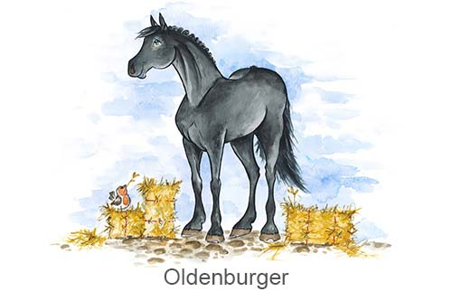 Produkte für Oldenburger