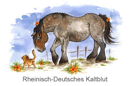 Produkte für Rheinisch-Deutsches Kaltblut