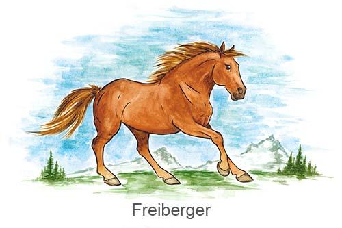 Produkte für Freiberger