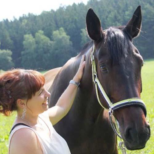Pferdephysiotherapie Aileen Ullrich