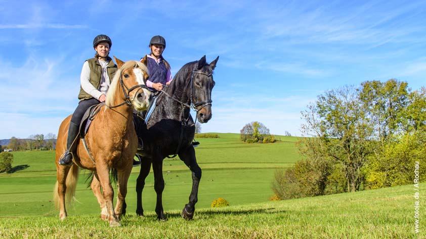 Aileen Ullrich - PHYSIO-FIT-PROGRAMM für Pferdebesitzer