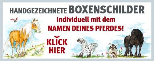 00-001-werbung-website_shop_500x200px
