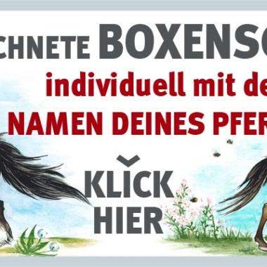 00-003-werbung-website_shop_1000x400px-3