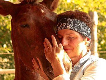Psychologie der Pferde aus Sicht der chinesischen Medizin mit Theresia Latzer auf der L & B Ranch in Lalling