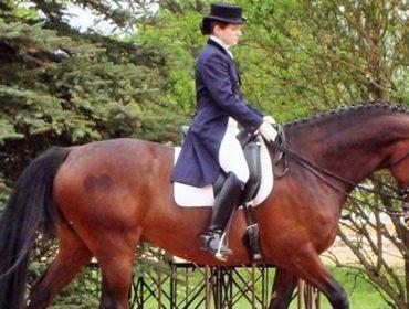 Karolin Köhler - Dressage, Horsemanship und Fütterungsmanagement