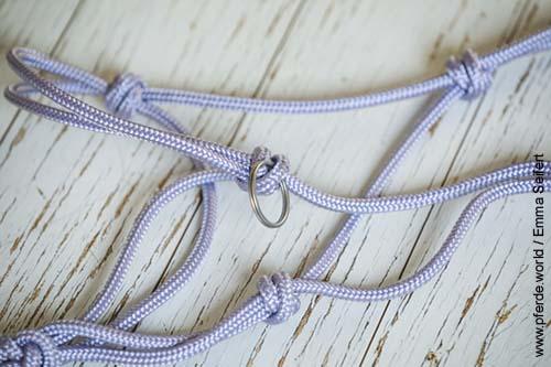 Knotenhalfter selbst knüpfen mit eingearbeitetem Ring
