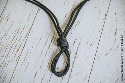 Knotenhalfter selbst knüpfen mit einfachem Knoten