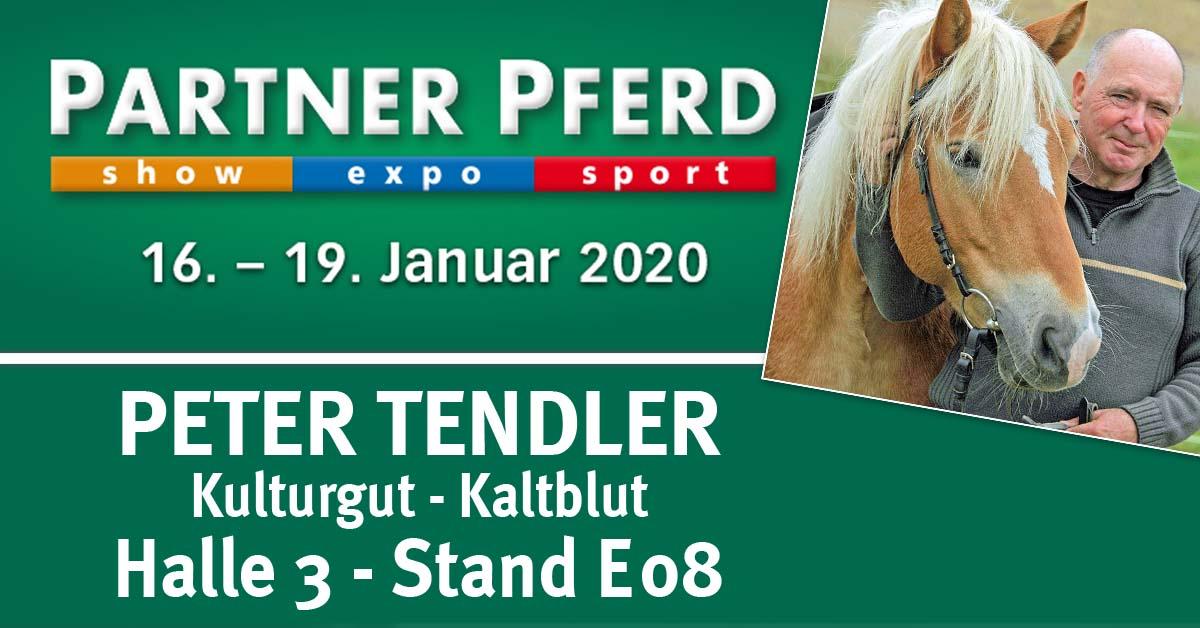 Peter Tendler auf der Partner Pferd 2020 in Leipzig