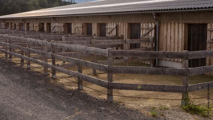 Silver Rock Ranch in Elterlein - Paddockboxen