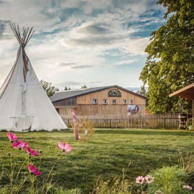 Silver Rock Ranch in Elterlein - Blick zur Reithalle