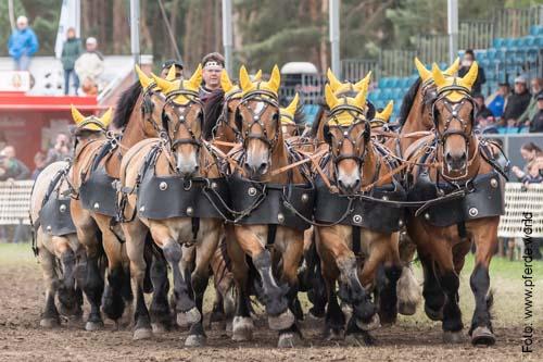 000338-titanen-der-rennbahn-thomas-haseloff-roemerwagenrennen