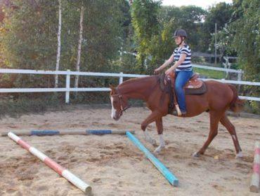 Lektion 1 – Übungen mit Stangen und Pylonen – Einführung