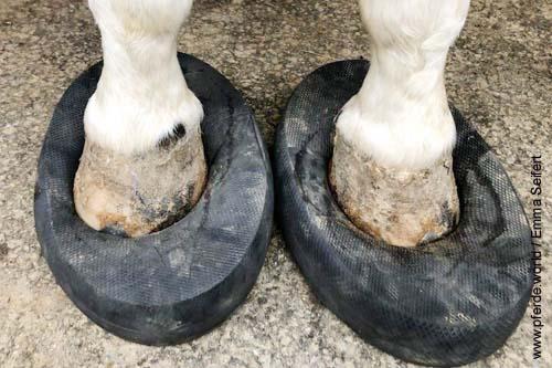 Balancepad für die Gesundheit der Pferde