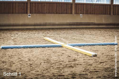 Aufbau Equikinetic für ein optimales Intervalltraining für Pferde