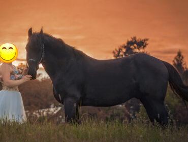 Schlichtes Shootingkleid mit Blumen für die Pferdefotografie