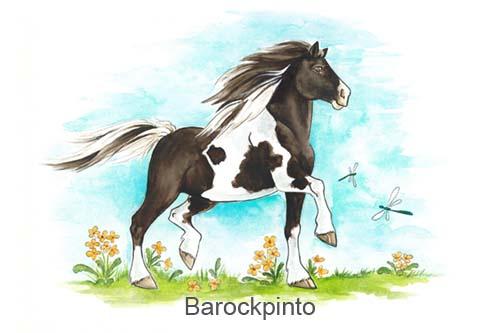 Produkte für Barockpinto